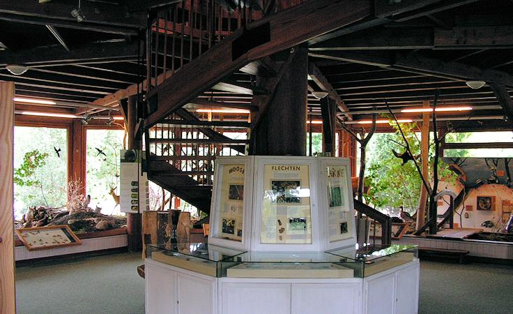 Blick auf die Wendeltreppe vor Durchführung der Maßnahme